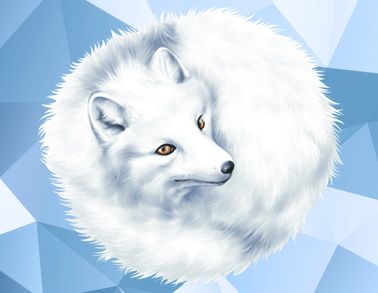 arctic-fox-thumb