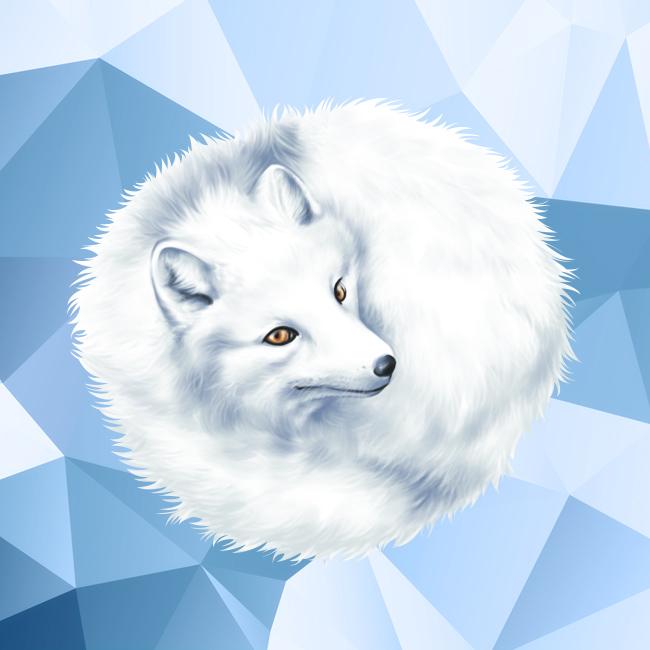 arctic-fox2