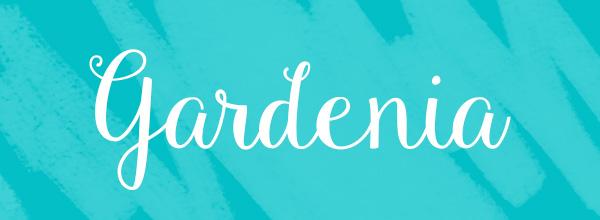 script-font-gardenia